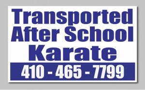 Afterschool Karate for Kids